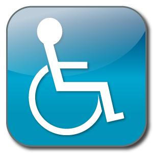 logo-handicap copie